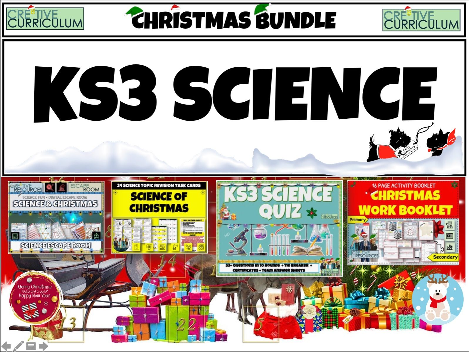 KS3 Science Christmas Bundle
