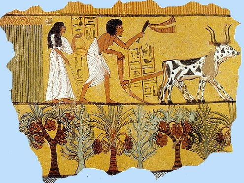 Ancient Egypt Seasons Lesson