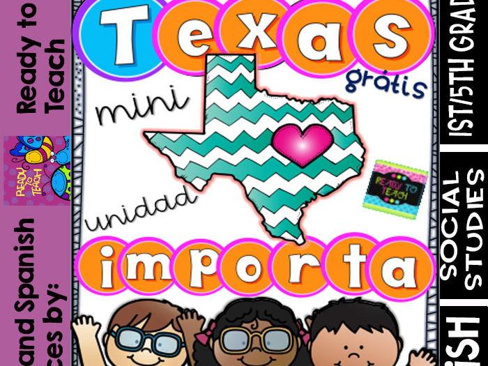 Texas Importa - Hurricane Harvey + Refection - FREE Mini Spanish Unit