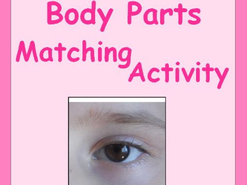 Body Parts Matching Activity for Special Education