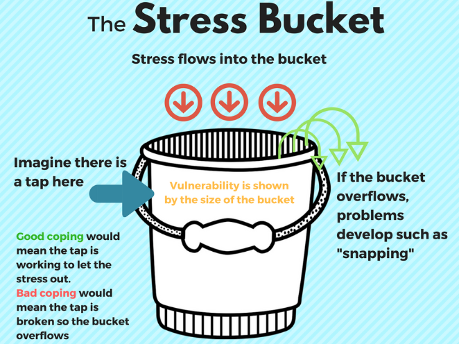 Stress Bucket Worksheet