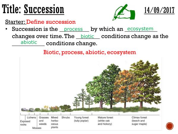 Succession - complete lesson (A2)