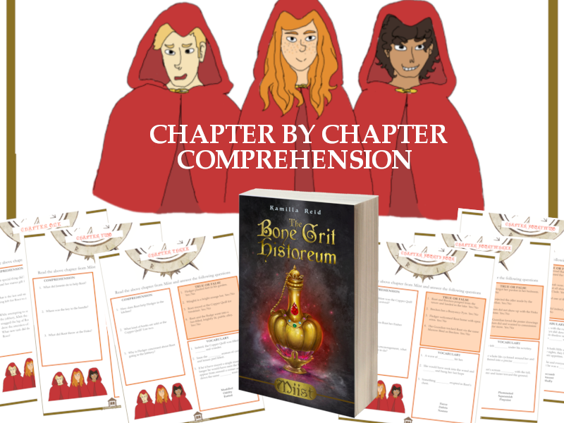 Extensive Chapter by Chapter Comprehension Worksheets for Miist by Kamilla Reid