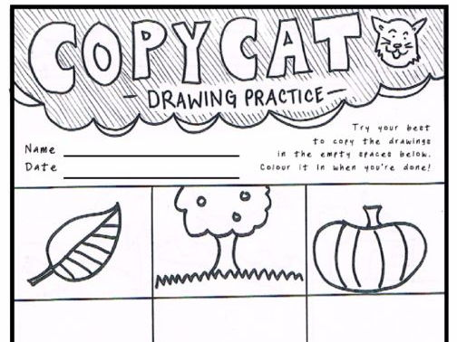 'Copy Cat 1' |  KS1 Drawing Practice