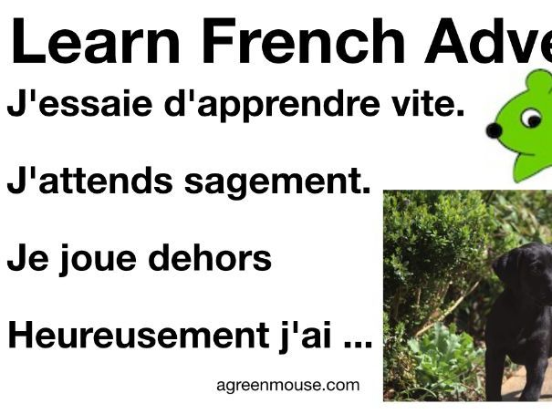 French Adverbs Video + Worksheets