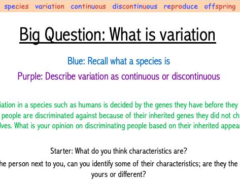 Year 7 Variation Lesson (7Da)