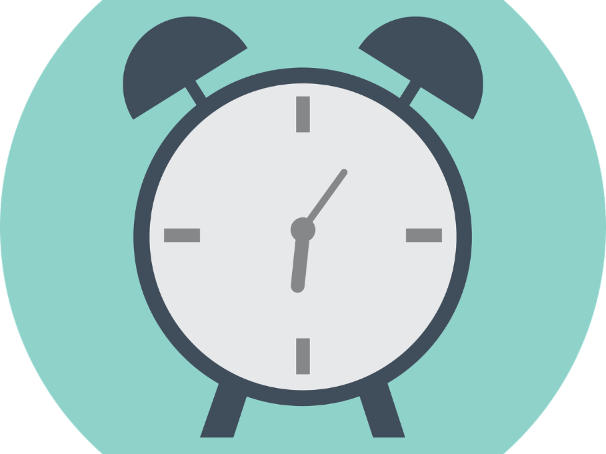 Set of 1 - 30 minute general timers
