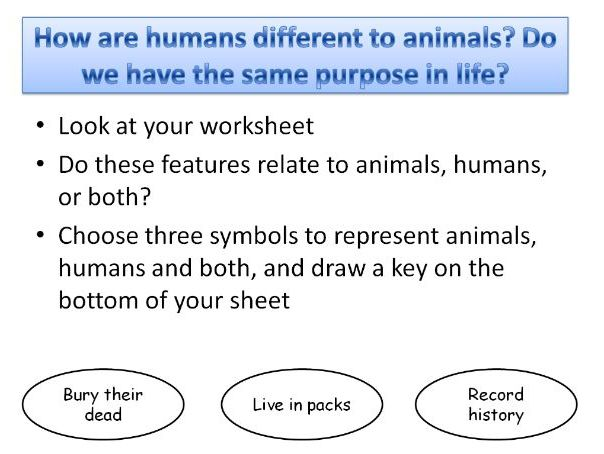 Meaning of Life KS3 WHOLE UNIT