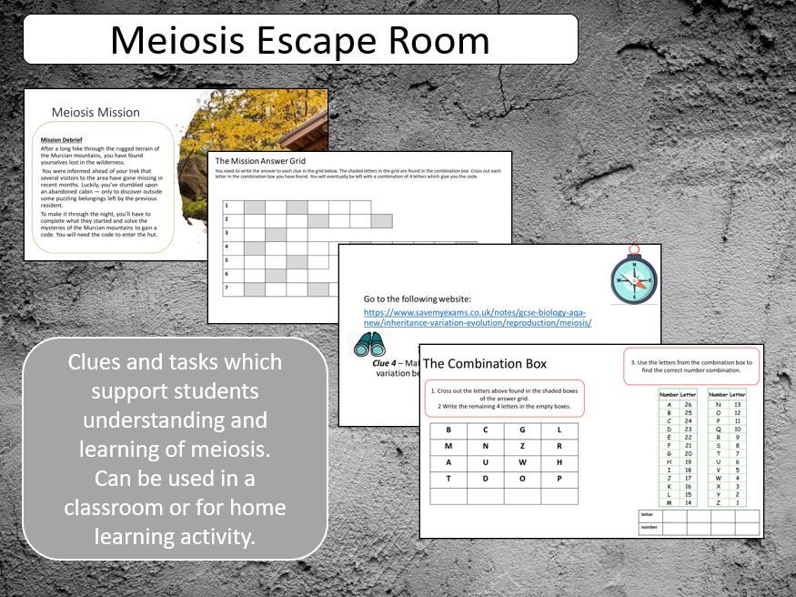 GCSE Meiosis Escape Room Activity - classroom or home learning activity