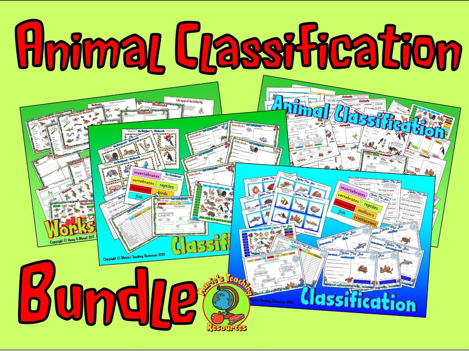 Animal Classification Bundle