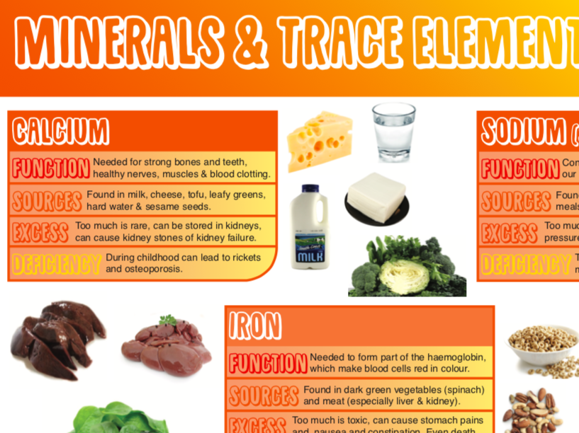 Minerals and Trace Elements  Poster - Food & Nutrition