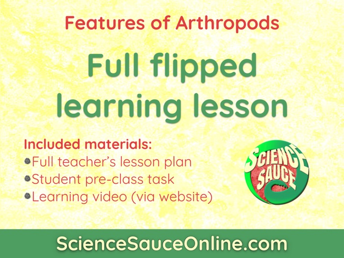 FLIPPED LEARNING: Arthropods