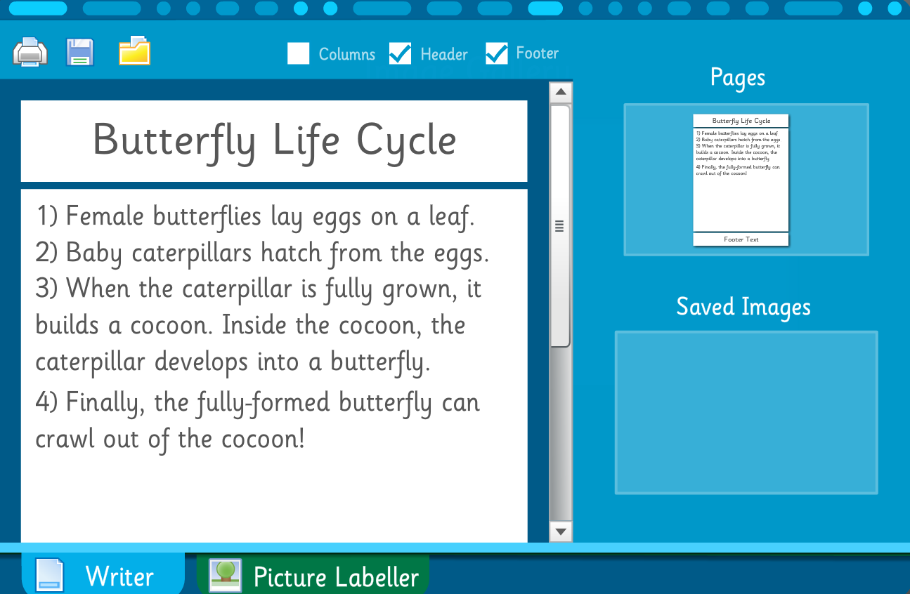 Make Your Own Information Poster: Butterfly Life Cycle - Interactive Activity - KS2 Literacy