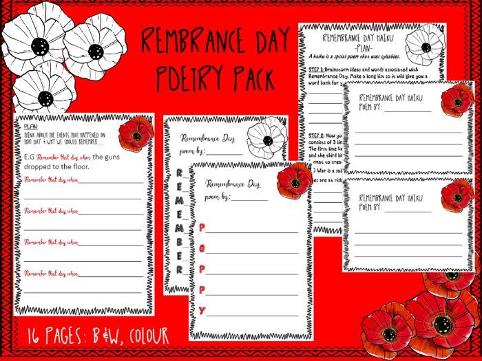 REMEMBRANCE DAY - Poetry
