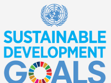 Introduction to the Sustainable Development Goals (SDGs)