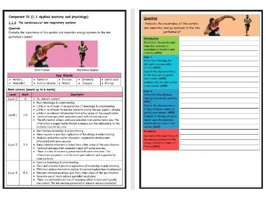 GCSE PE - OCR (9-1) - Structure Strip -Aerobic & Anaerobic Exercise - Extended Question Worksheet