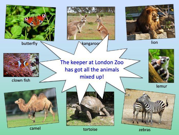 Matching animals to their habitat - KS1/KS2