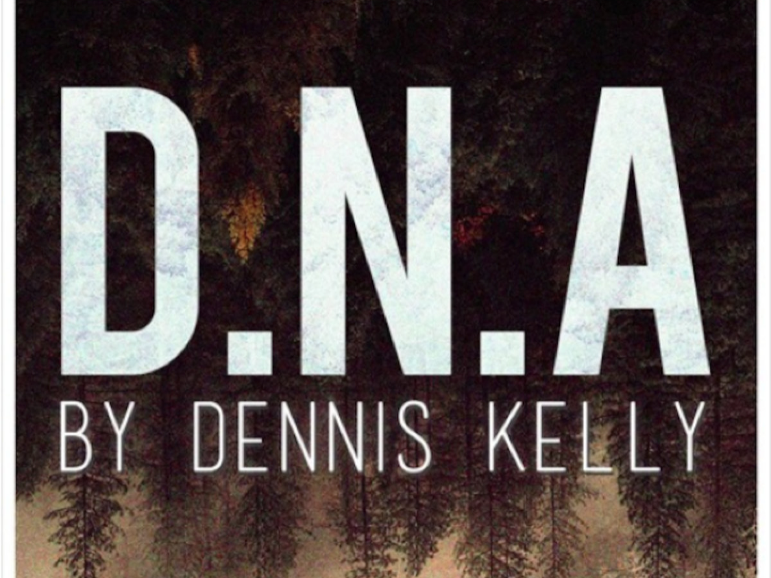 DNA by Dennis Kelly Full GCSE Bundle - SOW, Lesson Resources, Exam Guidebook, Design Guidebook