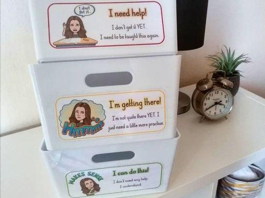 Self-Assessment Labels (editable)