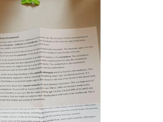 Edxcel Psychology GCSE (9-1) Developmental Psychology - folding revision notes