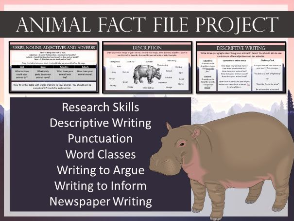 Animal Fact File Project - English Skills