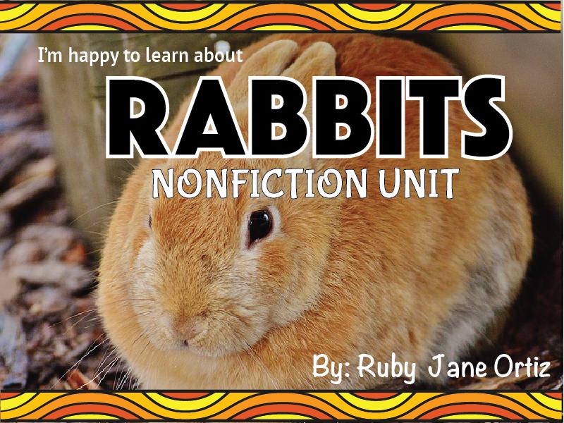 Rabbit Nonfiction Unit