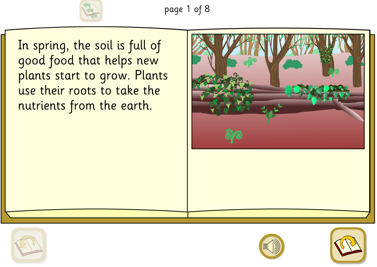Woodland Food Cycle Interactive Explanation Book - KS1 Literacy