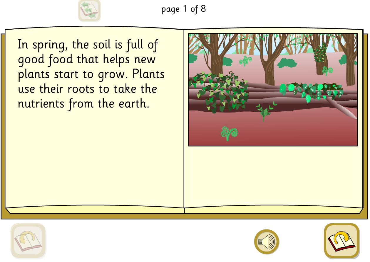 Woodland Food Cycle Interactive Explanation Book - KS1 Literacy