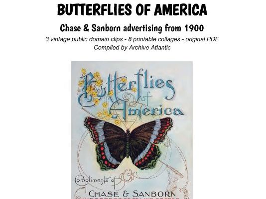 BUTTERFLIES OF AMERICA - Chase & Sanborn advertising from 1900