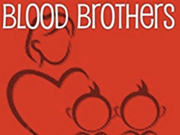 Blood Brothers: Notes Resource