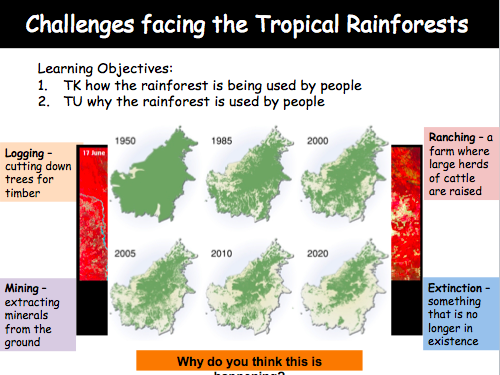 Lesson 6: Challenges facing the Tropical Rainforest