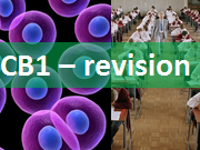 CB1 Edexcel - 7 revision lessons, exam questions, revision timetable and revision map