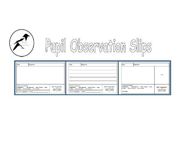 Pupil Observation Sheets