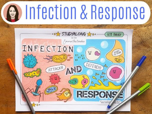 GCSE Biology Workbook Infection and Response