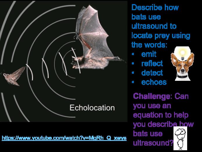 GCSE Physics Ultrasound full lesson (Edexcel 9-1 SP4f) Waves