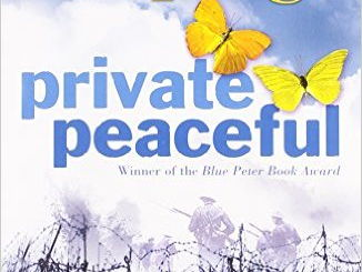 essay on private peaceful i have to write a 600 800 word essay on private peaceful bravery and cowardice throughout essay on the role of art in our lives