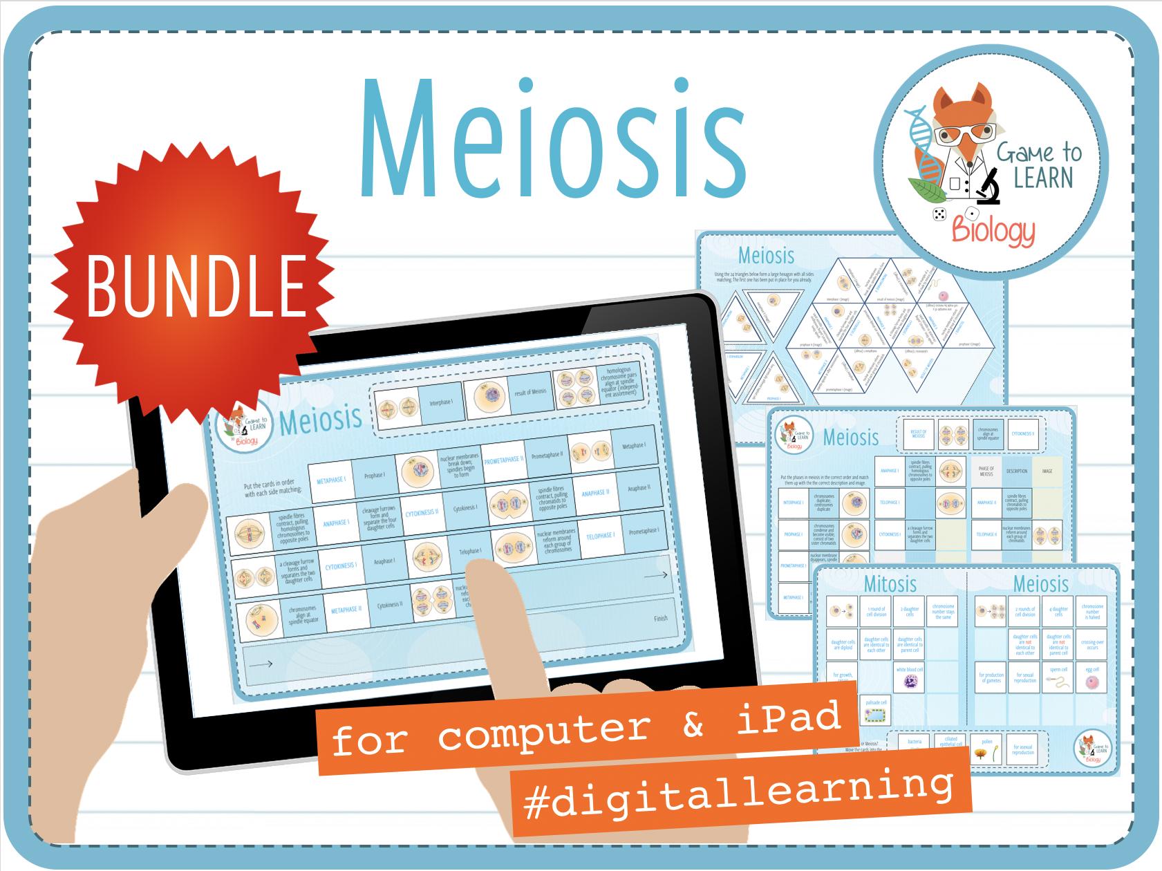 Meiosis - 4x Digital Games and Activities (KS4/5)