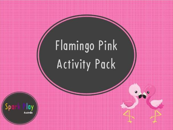 Flamingo Pink Activity Pack
