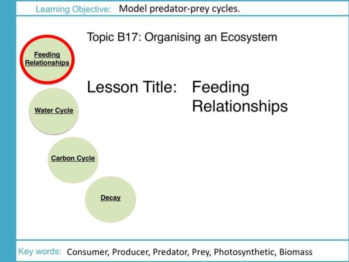 AQA GCSE: B17 Ecosystems: L1 Feeding Relationships
