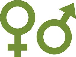IB Psychology Hormones and behaviour