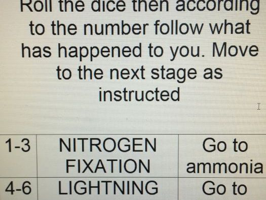 Nitrogen Cycle A level OCR
