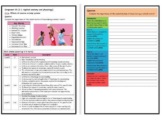 GCSE PE - OCR (9-1) - Structure Strip - Redistribution of Blood - Extended Question Worksheet