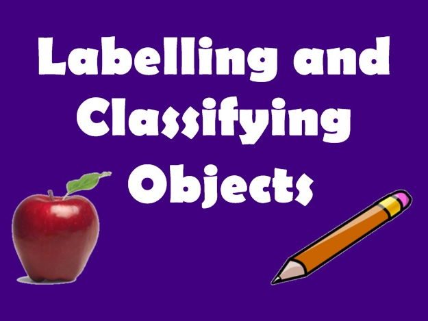 Computing (Year 1) – Labelling and classifying (6 lessons plans and presentations)