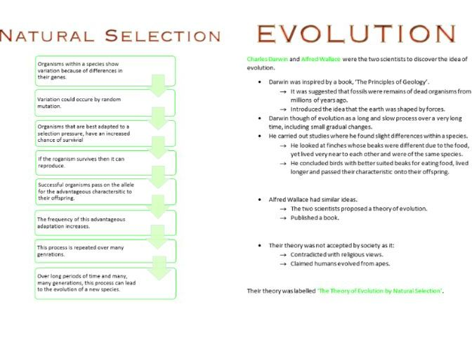 Classification and Evolution Booklet AS Biology OCR