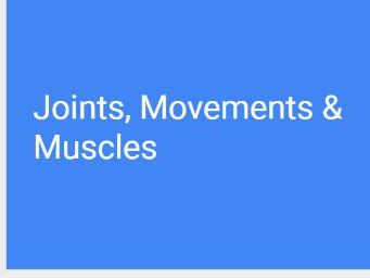 A-Level PE (OCR) Joints, Movements & Muscles (PowerPoint + full resources)