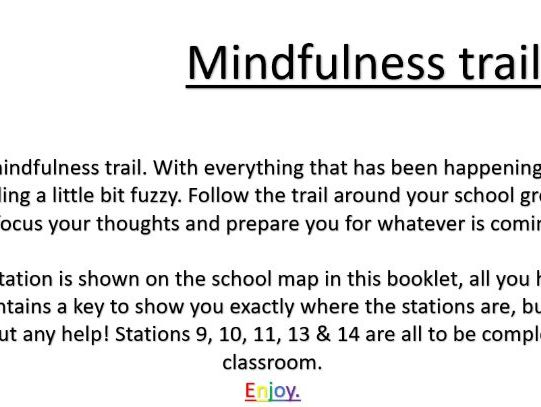 Mindfulness Activity