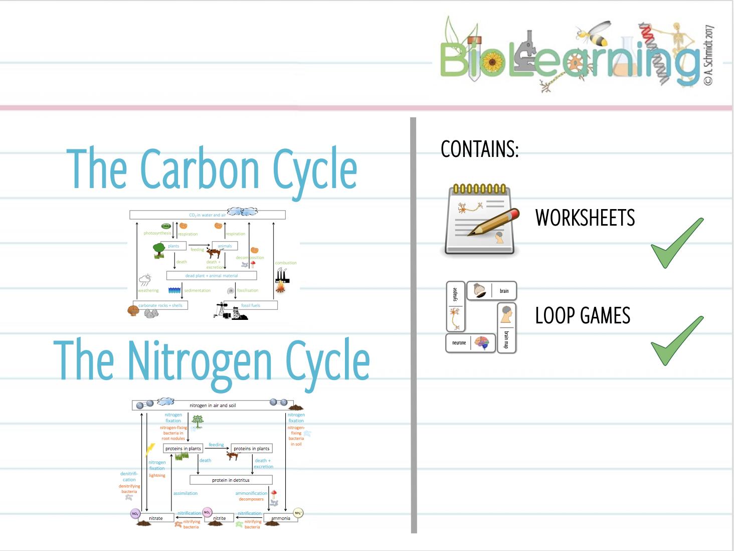 worksheet The Nitrogen Cycle Worksheet 4x carbon and nitrogen cycle 2x worksheets loop games ks3ks4 by anjacschmidt teaching resources tes