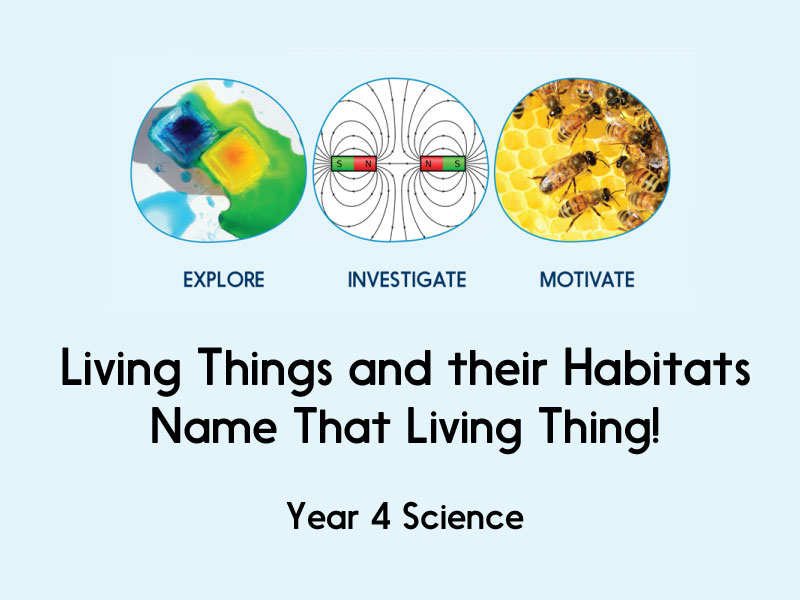 Living things and their habitats - Name That Living Thing! - Year 4