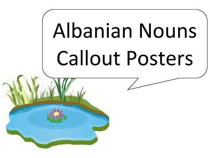 Albanian Nouns Callout Posters