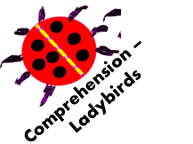 Comprehension - Ladybirds